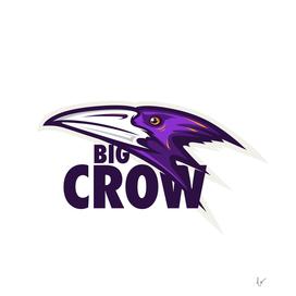 Big Crow Bird