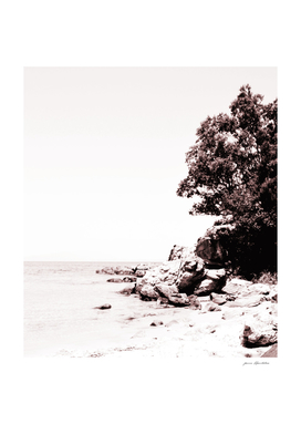 Beach days monochrome