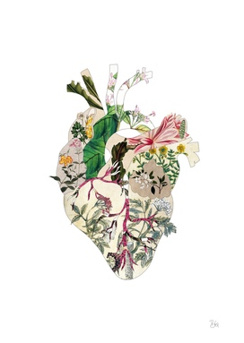 Vintage Botanical Heart