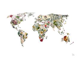 Vintage Botanical Map