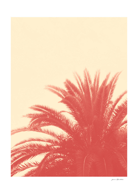 Palm Top Vintage Red