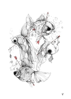 Fishcakes & Remedies