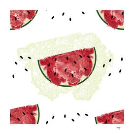 Melon Seamless Pattern