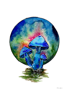 Toxic Blue Mushrooms