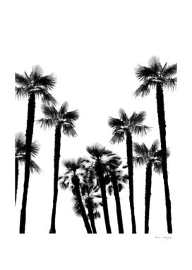 Tropical Palm Trees Dream #2 #tropic #decor #art