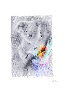 Koala: classic sketch, pastel drawing, colorful