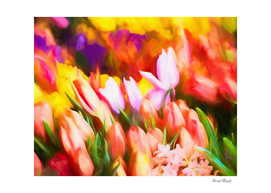 Many Colorful Tulips-Edit