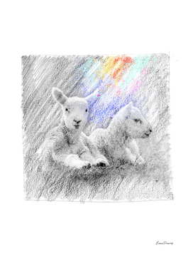 Baby Lamb, sheep: classic sketch, pastel drawing, colorful