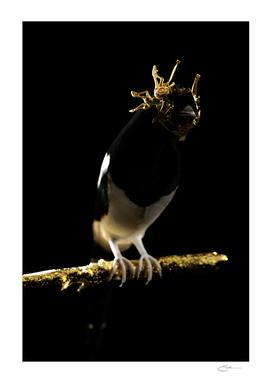 The Oligarchs Bird