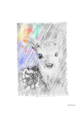 Baby deer: classic sketch, pastel drawing, colorful