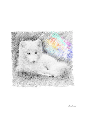 Baby wolf: classic sketch, pastel drawing, colorful