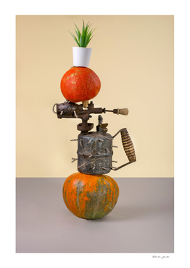 Abstract still life with pumpkins, blowtorch and cactus