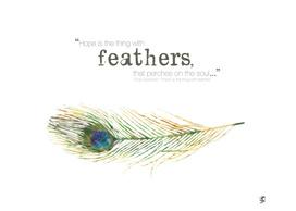 Feather Ilustration