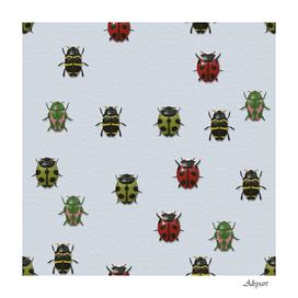 beetle insect ladybug animal
