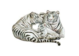 White Tiger family