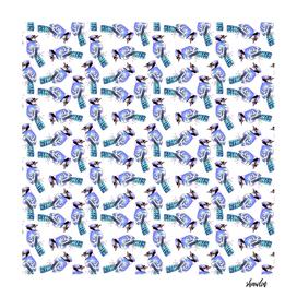 Blue jay birds watercolor birds
