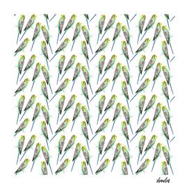 Green budgerigar bird watercolor