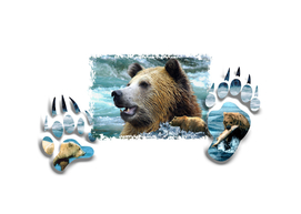 Window Art-Grizzly bears