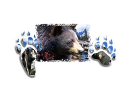 Window Art-Black Bears