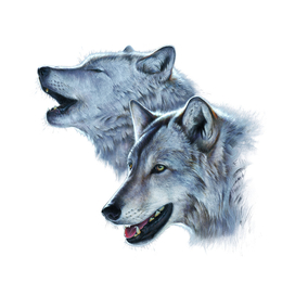 Silver Wolves