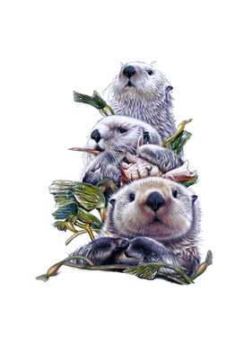 Sea Otter Stack