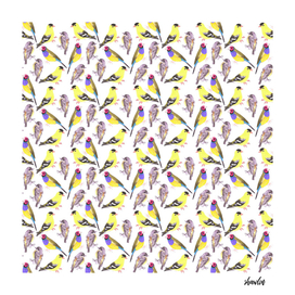 Birds in tints and shades of yellow watercolor