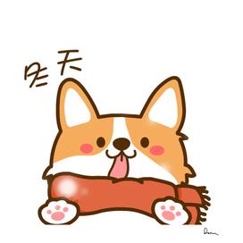 pembroke welsh corgi cuteness puppy cartoon winter