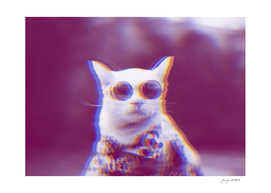 Trippy Cat in Sunglasses