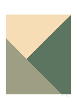Tan meets Sage & Cactus Green Geometric #1 #minimal #decor