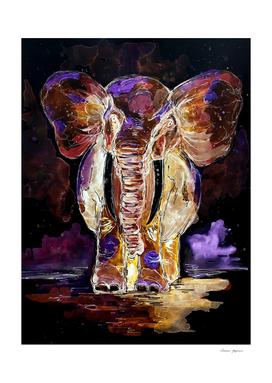 translucent elephant