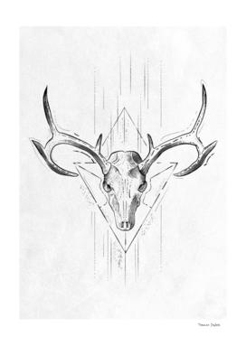 Skull Antlers