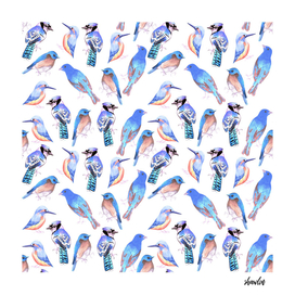 Birds in tints and shades of blue watercolor