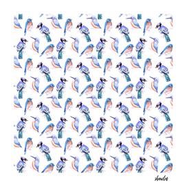 Birds kingfisher, bluejay, bluebird in watercolor