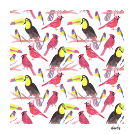 watercolor birds in tetrad color scheme