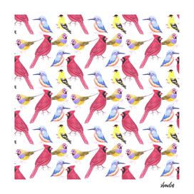 watercolor birds in triad color scheme