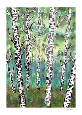 Birch Woods Watercolor