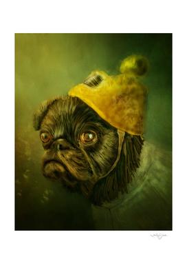 Piper The Pug