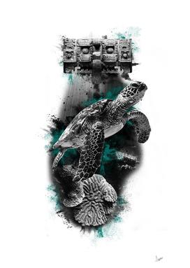 Mayan Turtle