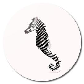 ZEAHORSE