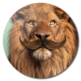 BEARDED LION