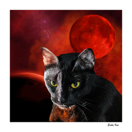 Black Cat and Planets
