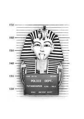 Tutankhamun Mugshot