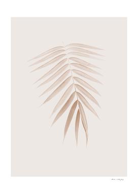Palm Leaf Finesse #1 #minimal #tropical #decor #art
