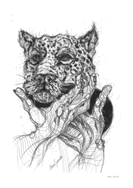 Wild Cat drawing