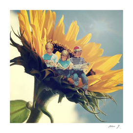 The sunflower readers