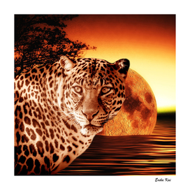 Leopard and Red Moon