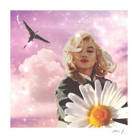 Daisy Marilyn