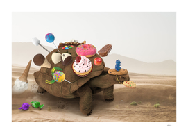 Dessert Tortoise