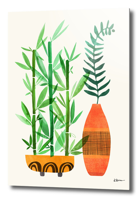 Bamboo and Fern