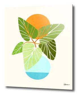Tropical Symmetry II